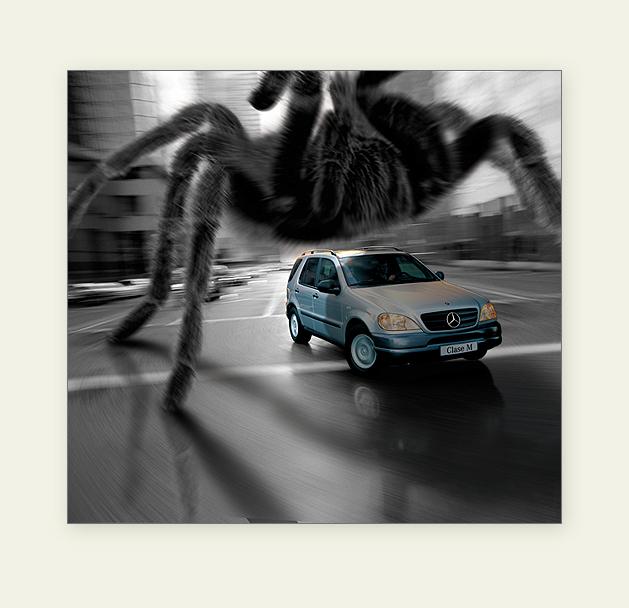 Gargantuous Tarantula