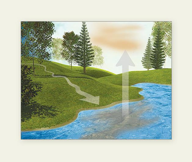 Pollution Illustrations