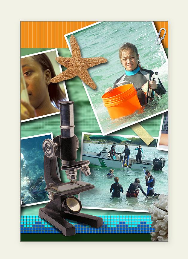 U.M. Oceanographic Postcard